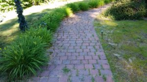 Paver restoration and renovations before