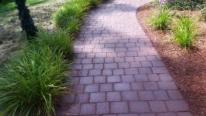 Patio Paver Maintenance with Techniseal